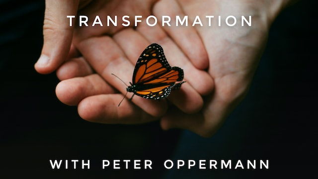 Transformation: Peter Oppermann