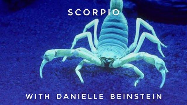 Scorpio: Danielle Beinstein