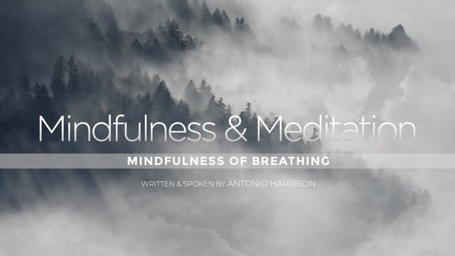 Mindfulness of Breathing