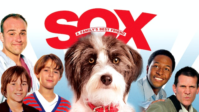 Sox: A Friend's Best Friend