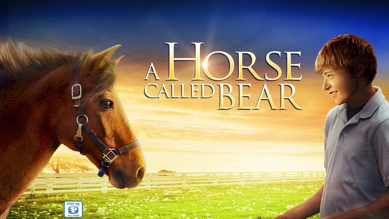 A Horse Called Bear