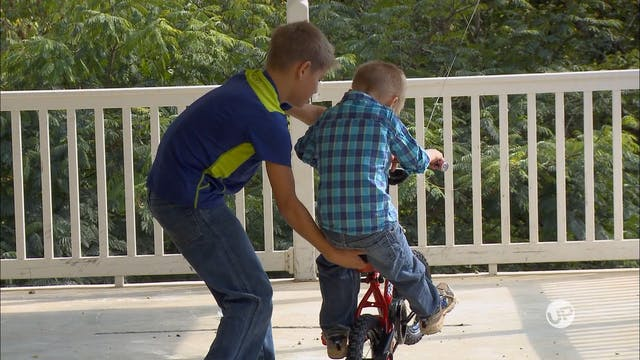 Training Wheels and Trick Saddles