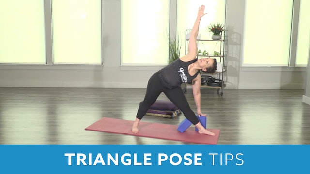 Triangle Pose Tips with Morgan