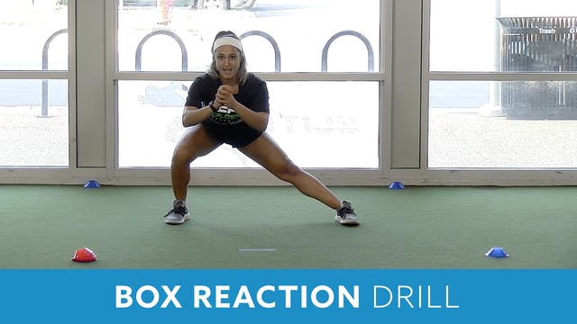 Box Reaction Drill (Explosive Perform...