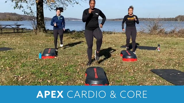 APEX CARDIO & CORE Thanksgiving style...