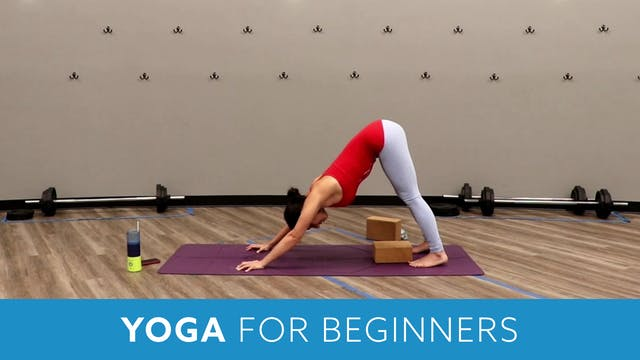 Yoga For Beginners with Nina