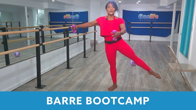 14Day Challenge Day 5 - Barre Bootcamp with Shahana