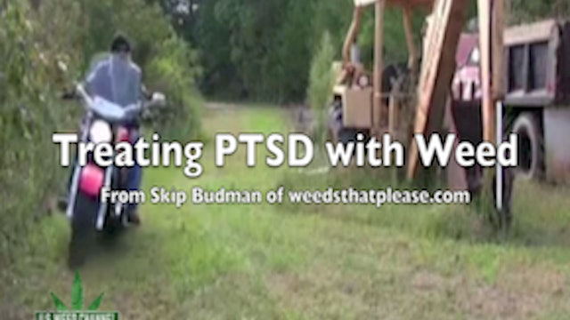 Using Weed to treat PTSD - with Skip Budman