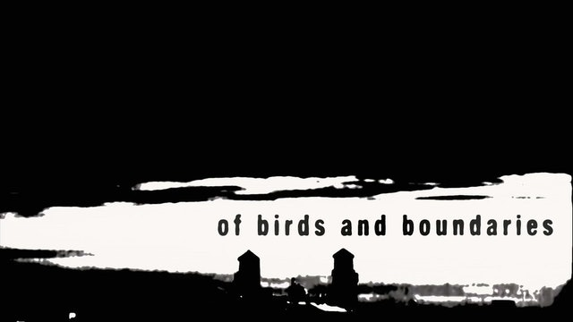 Of Birds and Boundaries