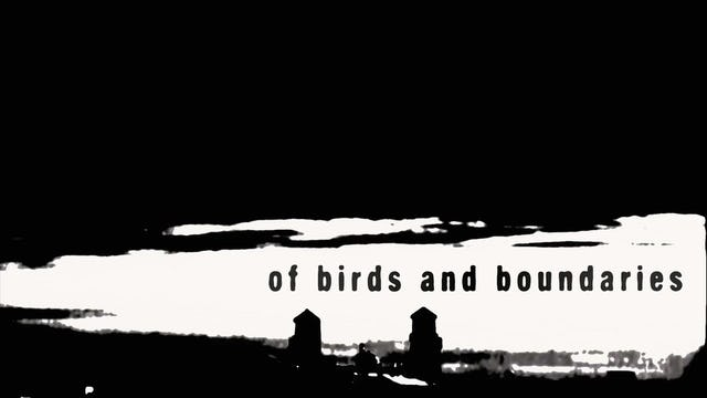 Of Birds and Boundaries