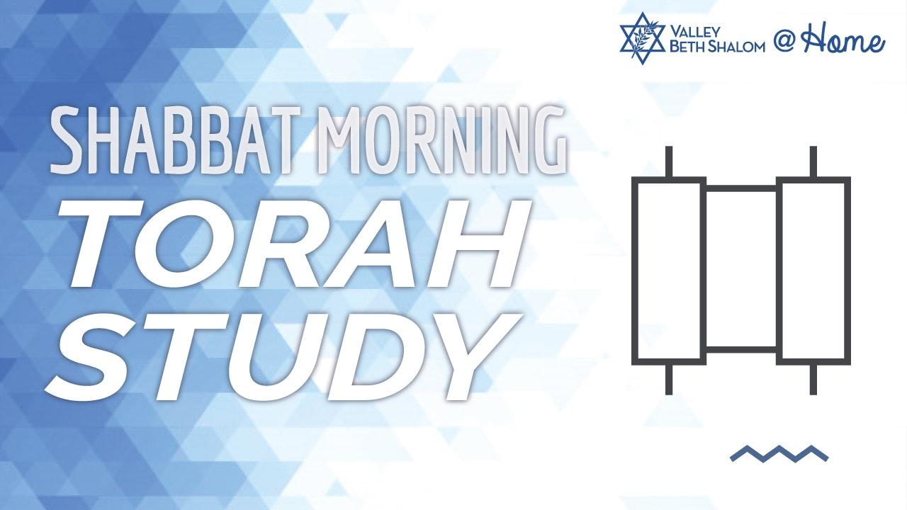 Torah Study with Rabbi Ed Feinstein