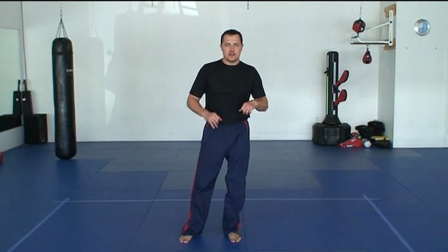 Part 1 Mechanics of Striking