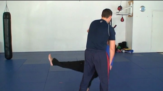 Striking and Whip Training