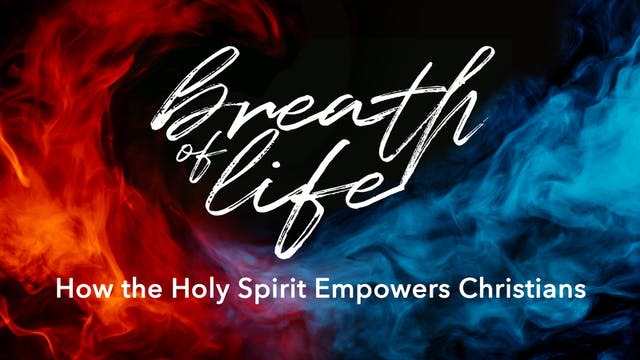 Kerry McGonigal: How the Holy Spirit ...