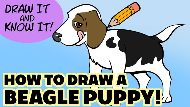 Draw It And Know It - How To Draw A Beagle Pup