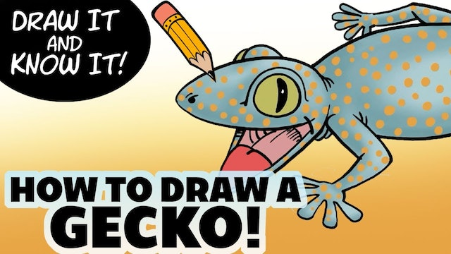 Draw It And Know It - How To Draw A Baby Gecko
