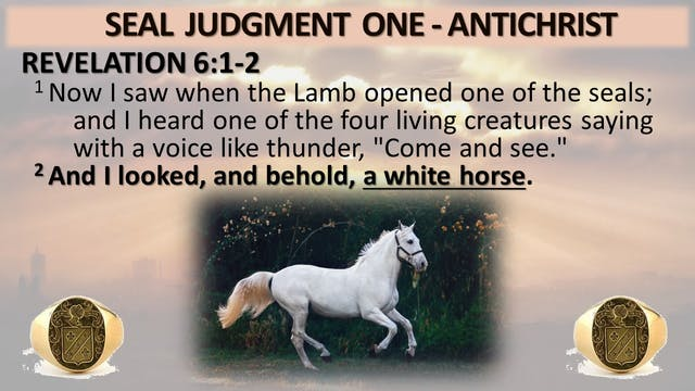 The 7 Seal Judgements - Seal 1: The W...