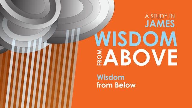 Wisdom from Below