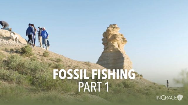 Fossil Fishing - Part 1