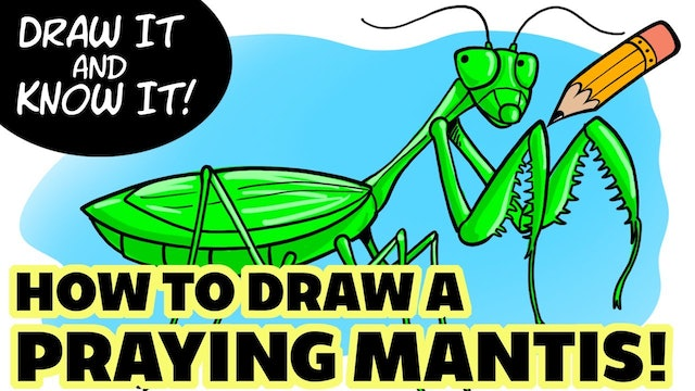 Draw It And Know It - Art Lesson Edition - How To Draw A Praying Mantis