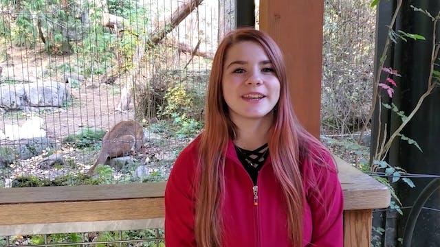 Eagle Zoo Minute