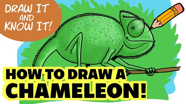 Draw It And Know It - Art Lesson Edition - How To Draw A Chameleon