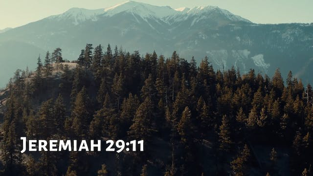 The WORD - Jeremiah 29:11 - Fountainv...