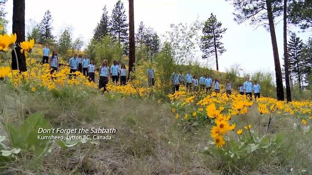 Don't Forget The Sabbath - Fountainvi...
