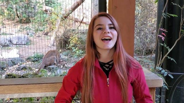 Elephant Zoo Minute