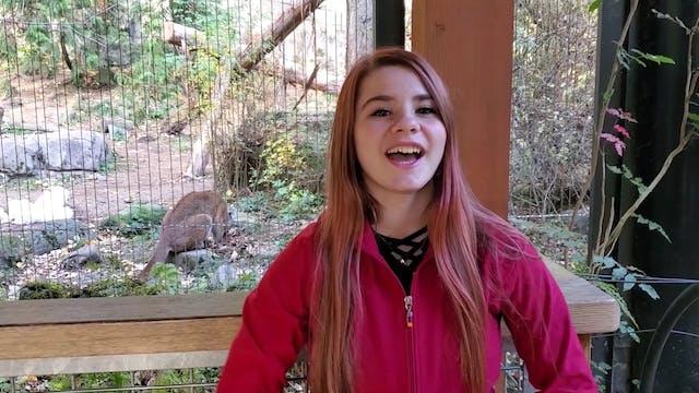 Snake Zoo Minute