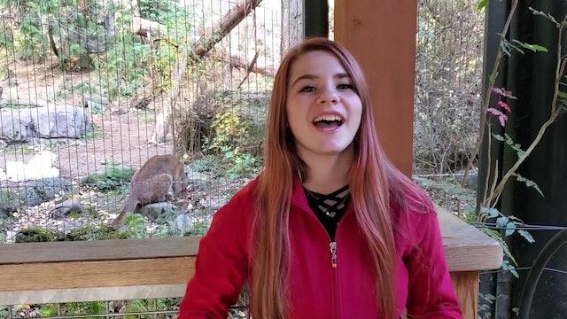 Manatee Zoo Minute