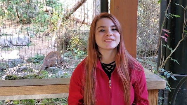 Ostrich Zoo Minute
