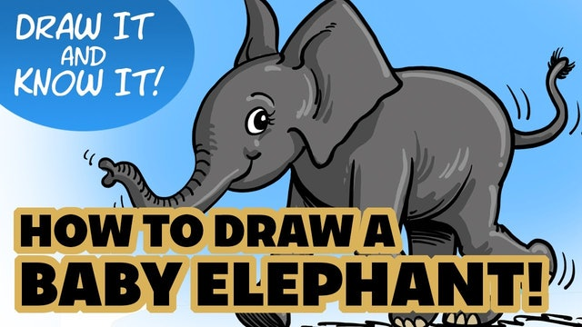 Draw It And Know It - Art Lesson Edition - How To Draw A Baby Elephant