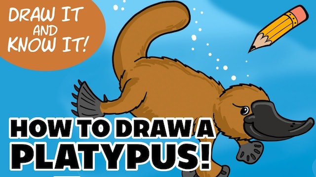 Draw It And Know It - Art Lesson Edition - How To Draw A Platypus