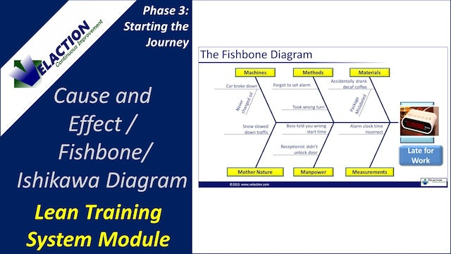 Cause and Effect Diagram (Training Module Video)