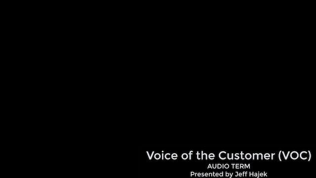 Voice of the Customer / VOC (AUDIO TERM)