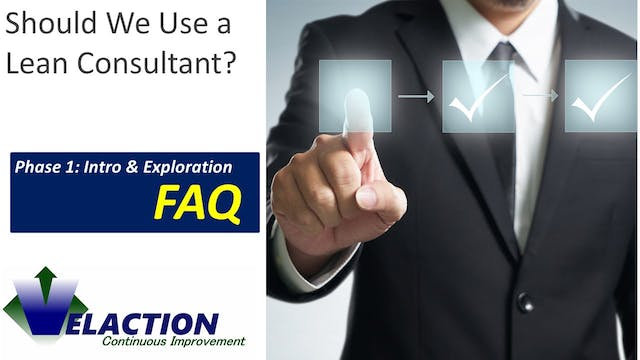 Should we use a Lean consultant?