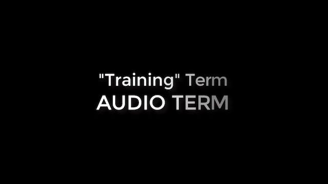 Training (AUDIO TERM)
