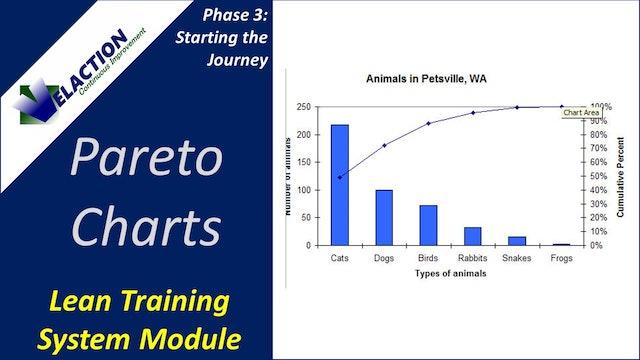 Pareto Charts (Training Module Video)