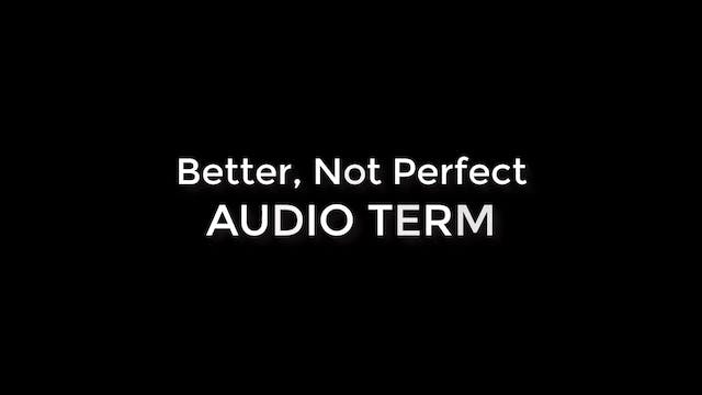 Better, Not Perfect (Audio Term)