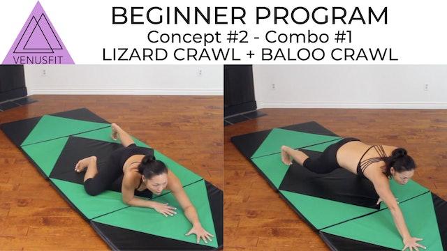 Beginner Program - Concept #2: Combo #1