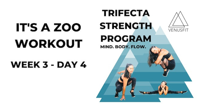 It's A Zoo Workout - WEEK 3, DAY 4