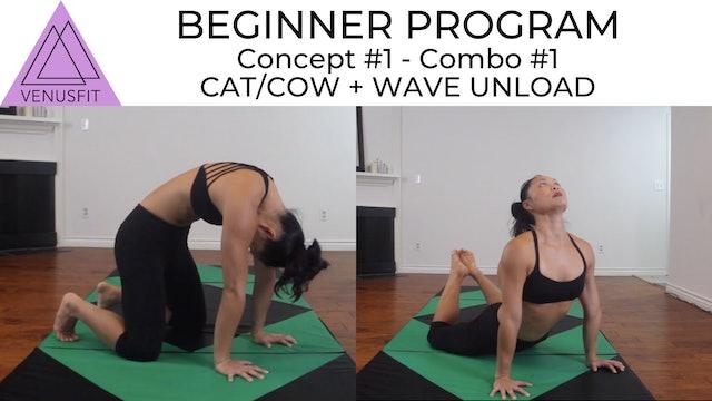 Beginner Program - Concept #1: Combo #1