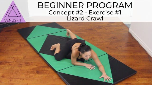 Beginner Program - Concept #2: Exerci...
