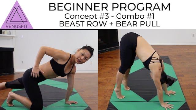 Beginner Program - Concept #3: Combo #1
