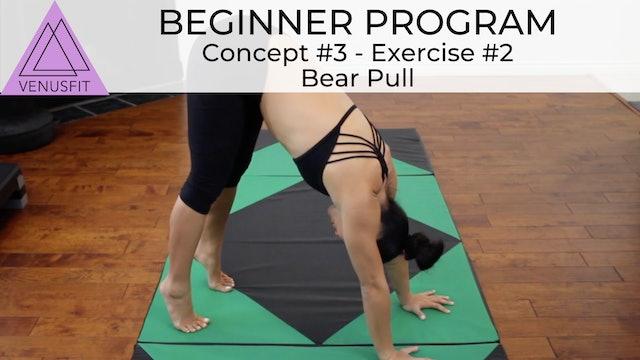 Beginner Program - Concept #3: Exercise #2 Bear Pull