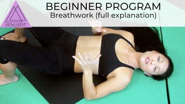Beginner Program - Breathwork (long version)