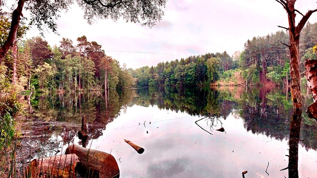 The Haunted Hunts: Delamere Forest