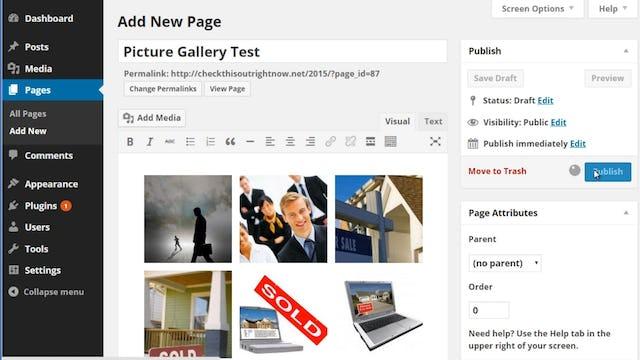 Wordpress Customization: 9 - Photo Galleries
