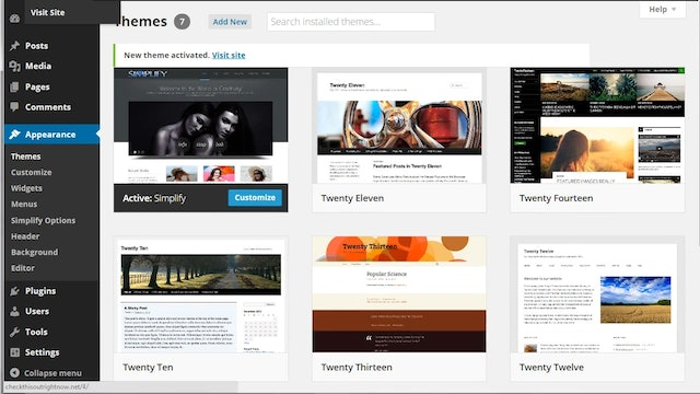 Building Your Website: 11 - How to Install Themes